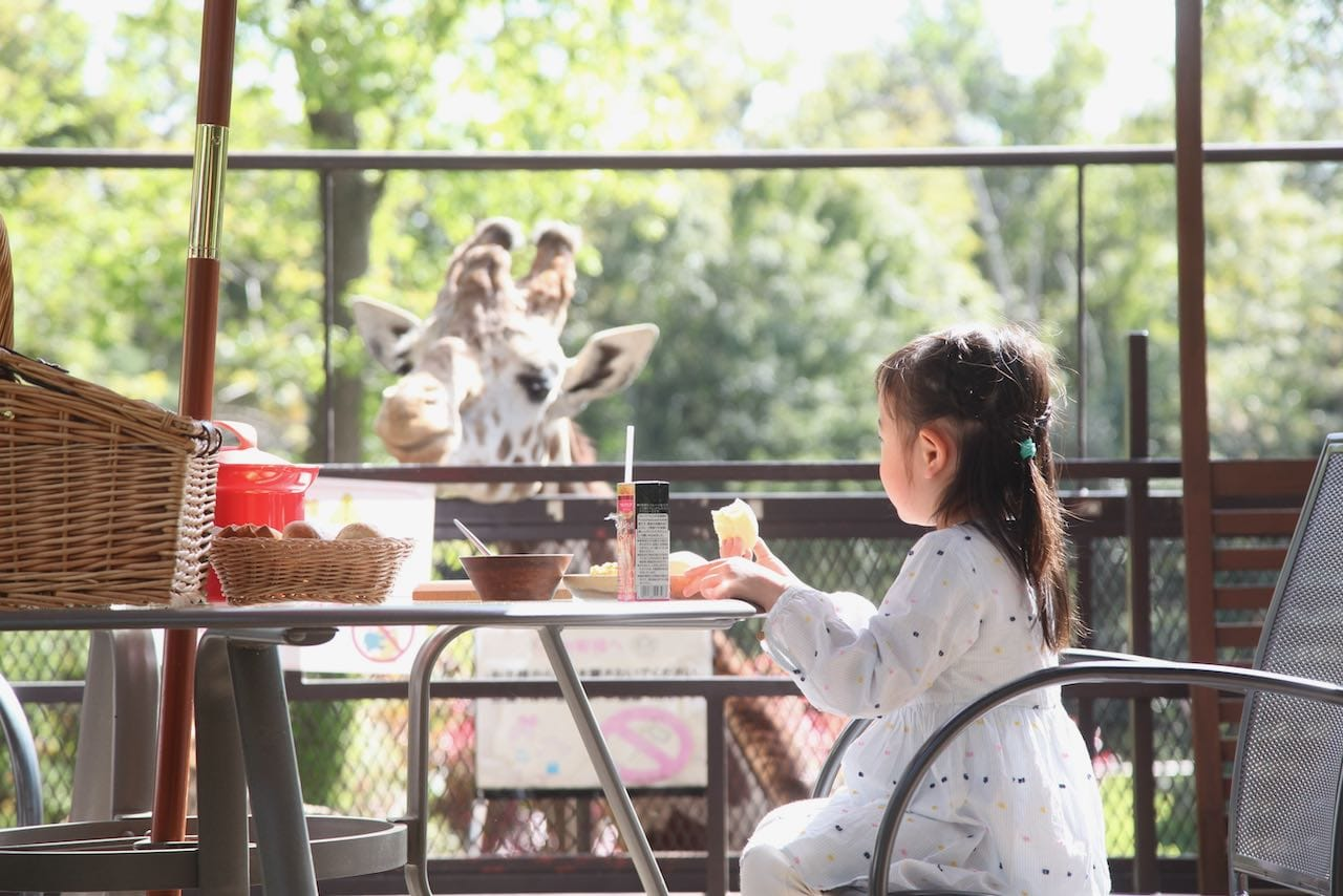 【子連れ体験】キリンと朝ごはんを食べれると口コミで評判のバンブーフォレスト(千葉県市原市)に泊まってみた